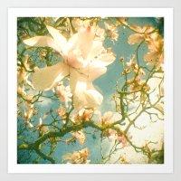magnolia Art Prints featuring Magnolia by Cassia Beck