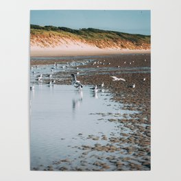 Low tide beach Poster