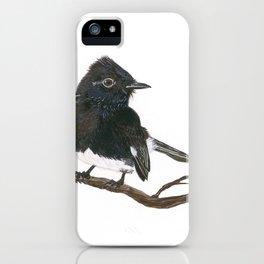 Black Phoebe Watercolor iPhone Case