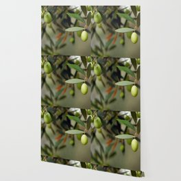 Olives On A Branch Wallpaper