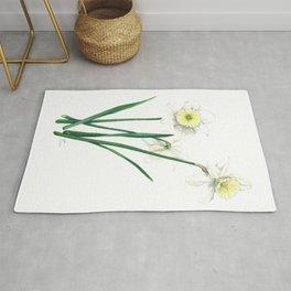 White Daffodils - 'Ice Follies' Botanical Illustration Rug