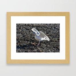 Angelic Framed Art Print
