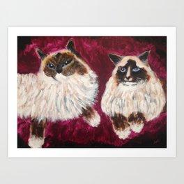 Posing Cats Art Print