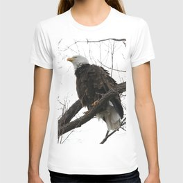 Looking up to a Bald Eagle T-shirt