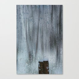 Snow and raindrops Canvas Print