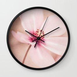 POWDERY SOFT Wall Clock
