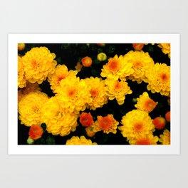 Golden Dew Drops. Art Print