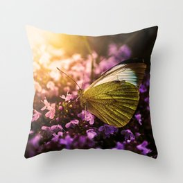 Butterfly Wings Throw Pillow