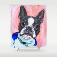 boston terrier Shower Curtains featuring Boston Terrier by A.M.