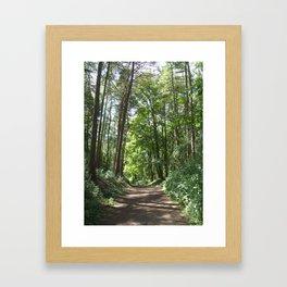 Woodland Walk Framed Art Print