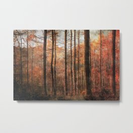 Ousbrough Woods Metal Print