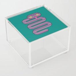 Linda the Snake Acrylic Box