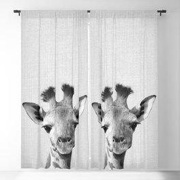 Baby Giraffe - Black & White Blackout Curtain