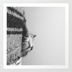 Sleeping Cat in Black and White Art Print