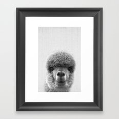 Alpaca Smile Framed Art Print