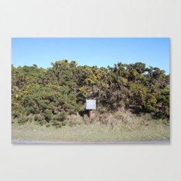 Roadside Canvas Print