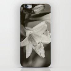 Untitled Flower Monochrome iPhone & iPod Skin