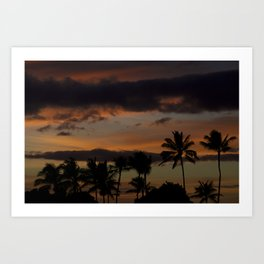 Oahu Palm Shadows Art Print
