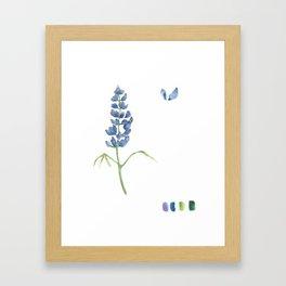 Bluebonnet Framed Art Print