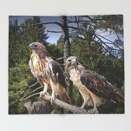 Pair of Red-tail Hawks Throw Blanket