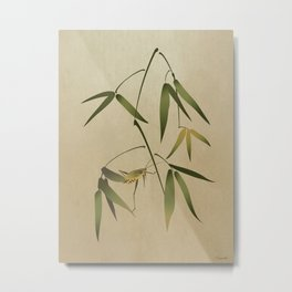 Grasshopper and Bamboo Metal Print