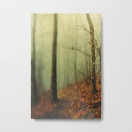 Forest Hike in the Fog Metal Print