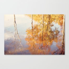 Autumn Trees Reflection Photography, Fall Tree Nature Orange Gold Yellow Purple, Water Reflections Canvas Print