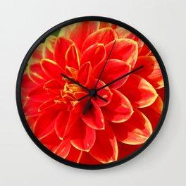 Lovely Dahlia Wall Clock