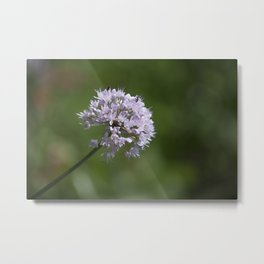 Small Bouquet Metal Print