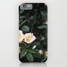 Snowwhite Slim Case iPhone 6s