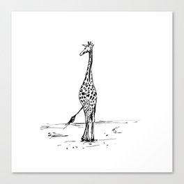 Walking Giraffe Canvas Print