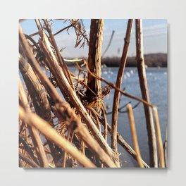 Duck Blind Metal Print