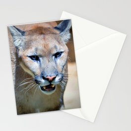 The Mountain Lion Stationery Cards