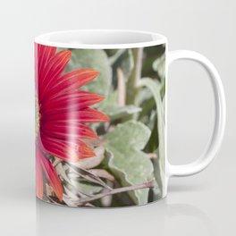 Little red Gerbera Coffee Mug