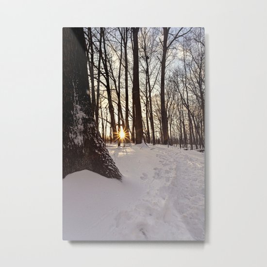 up the snowy path Metal Print