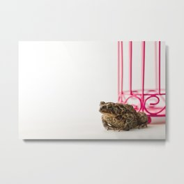 Toad and the Pink Bird Cage Metal Print