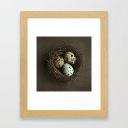 Speckled Eggs and Nest Framed Art Print