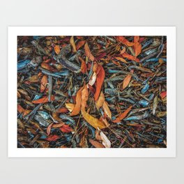 dry brown leaves and dry tree branches on the ground Art Print