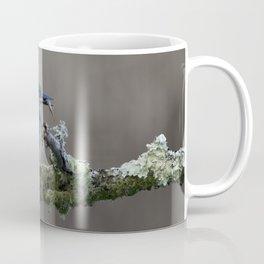 Kingfisher with Fish on a branch Coffee Mug