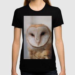 Barn Owl on Alert T-shirt
