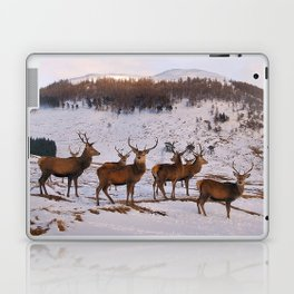 The Gathering of Stags Laptop & iPad Skin
