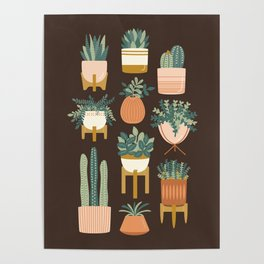 Cacti & Succulents Poster