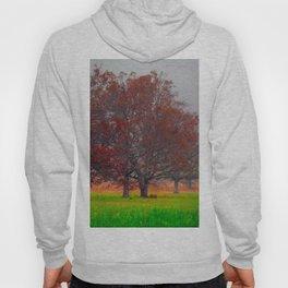 Tree of Beauty Hoody