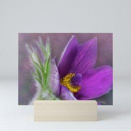 Purple Beauty Mini Art Print