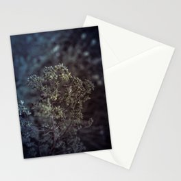 As the summer ends 2 Stationery Cards