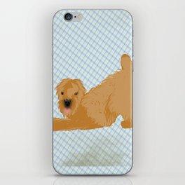 Wheaten Terrier Dog iPhone Skin