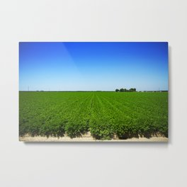 field of greens Metal Print