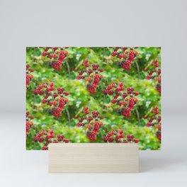 Rural life - red blackberries Mini Art Print