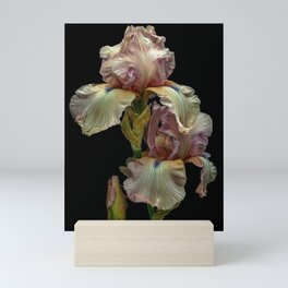 Iris Love Mini Art Print