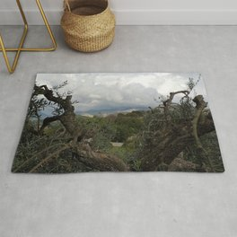 Countryside Hills Landscape with Olive Tree Rug